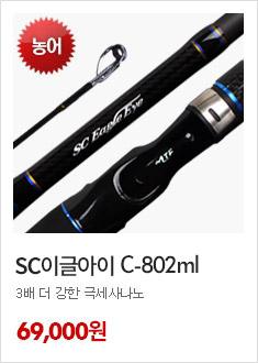 SC이글아이C802